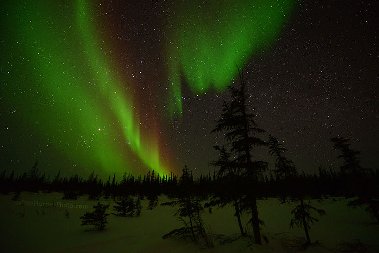 churchill northern lights stock photography